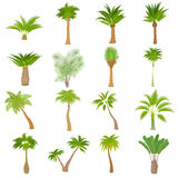 Different palm trees icons set, cartoon style. Different palm trees icons set. Cartoon illustration of 16 different palm trees vector icons for web Stock Images