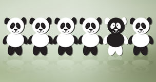Different panda Stock Images