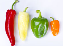 Different paprika kinds. A different coloured paprika kinds to food Stock Photos
