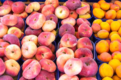 Different peaches for sale Stock Image
