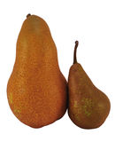 Different Pears Royalty Free Stock Images