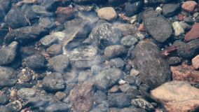 Different pebble stones in clear water of Lahti region, Finland. Close up footage. Stock Images