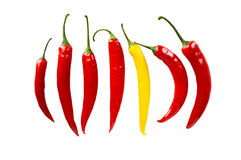 Different pepper stand out from the crowd in line  Stock Photo