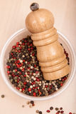 Different peppercorn in bowl with pepper mill Stock Images