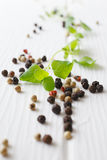 Different peppercorns and marjoram Stock Photography