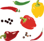 Different peppers on a white background Royalty Free Stock Photography