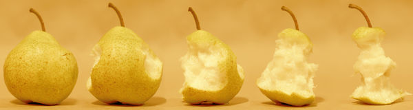 Different periods of pear Stock Image