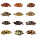 different pile spices isolated Stock Image