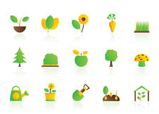 Different Plants and gardening Icons Royalty Free Stock Photo