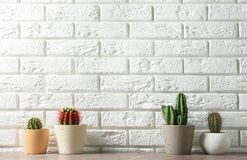 Different potted cacti on table near brick wall, space for text. Interior decor stock photography
