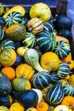 Different pumpkin varieties at market Stock Image