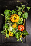 Different pumpkins harvest in wooden box with stems , leaves and flowers Royalty Free Stock Photo