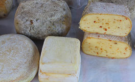 Different qualities of cheese with different forms. In the market Stock Images
