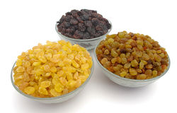 Different raisins Stock Images