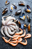 Different raw seafood on rock Royalty Free Stock Photo