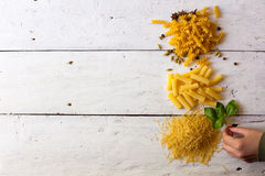 Different raw sorts of pasta and basil Royalty Free Stock Photography