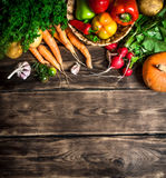 Different raw vegetables . Royalty Free Stock Image