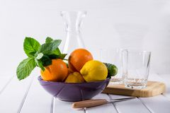 Different refreshing citrus fruits on a plate. Cocktail ingredients. Fruit set. Stock Photo