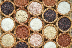 Different rice  collection background Stock Images
