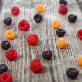 Different ripe berries Stock Images
