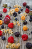 Different ripe berries Royalty Free Stock Photo