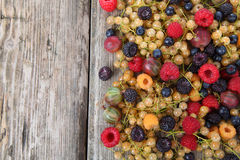 Different ripe berries Stock Photography