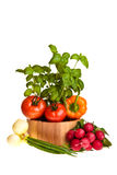 Different ripe vegetables Royalty Free Stock Photography