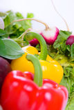 Different ripe vegetables Stock Photo
