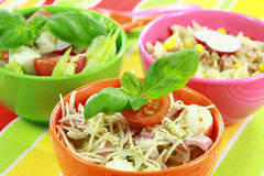 Different salads in buffet Royalty Free Stock Photo