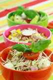Different salads in buffet Stock Images