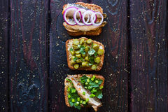 Different sandwiches with vegetables, greenery and fish Stock Photos