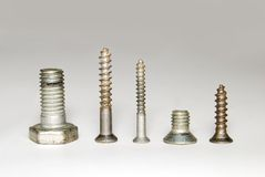 Different screws Stock Photography