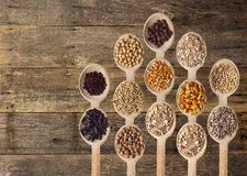 Different Seeds on Wooden Spoons Stock Photos