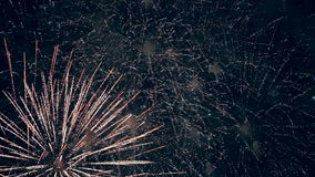 Different shapes and appearance of the fireworks.