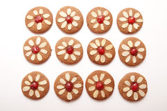 Different Shapes of Gingerbread Cookies Royalty Free Stock Photo