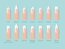Different shapes of nails. Professional female manicure. Nails trends. Vector illustration. Royalty Free Stock Photography