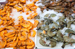 Different shrimps for sale Stock Photography