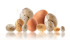 Different size eggs with reflection on white Royalty Free Stock Photography