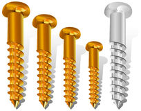 Different size screws Royalty Free Stock Image