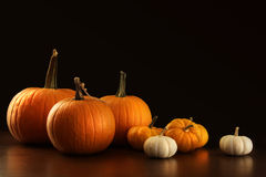 Different sized pumpkins and gourds on dark Royalty Free Stock Images