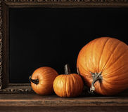 Different sized pumpkins on table Royalty Free Stock Images