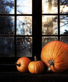 Different sized pumpkins in window Royalty Free Stock Photography