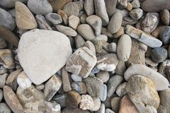 Different sizes pebble stone. Stones background Stock Images