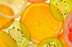 Different sliced juicy citrus Royalty Free Stock Photo