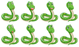 Different snake expressions Royalty Free Stock Photo