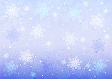 Different snowflakes Royalty Free Stock Images