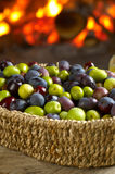 Different sort of olives Stock Images
