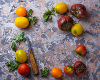 Different sort of tomato on concrete background Stock Images