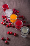 Different sorts of alcohol shots. Different sorts of alcohol drink shots with red cranberries Stock Photography