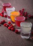 Different sorts of alcohol shots. Different sorts of alcohol drink shots with red cranberries Royalty Free Stock Photography